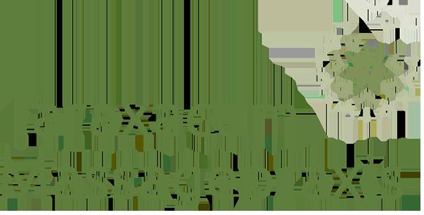 Massagepraxis Taraxacum